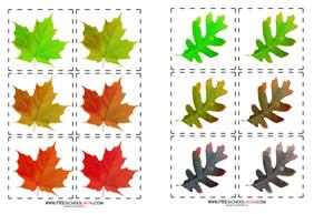 fall leaf preschool printables